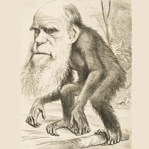 Xerrada sobre Charles Darwin i la evolució de les espècies